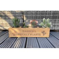 Personalised Cactus Garden